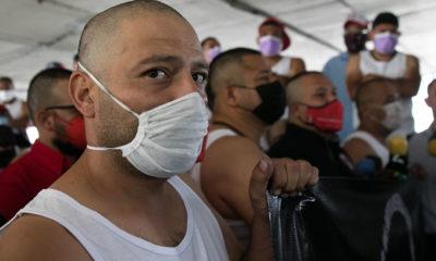 """Disuelven a """"Los Mastines"""", grupo autodefensa del voto"""