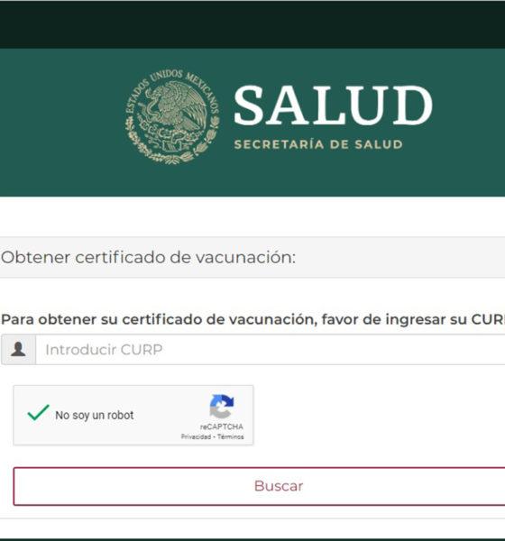 ¿Cómo obtener el certificado de vacunación Covid-19 y para qué sirve?