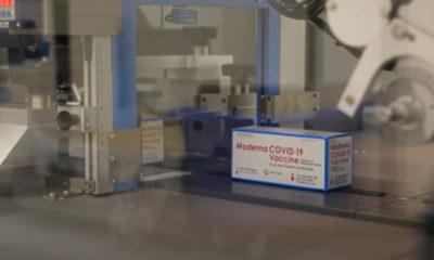 Vacuna anticovid de Moderna, ¿pierde efectividad al medio año?