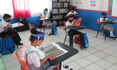 CNTE no acepta regreso a clases presenciales; realiza encuesta a padres