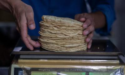 Advierten que la tortilla se convertirá en producto de lujo