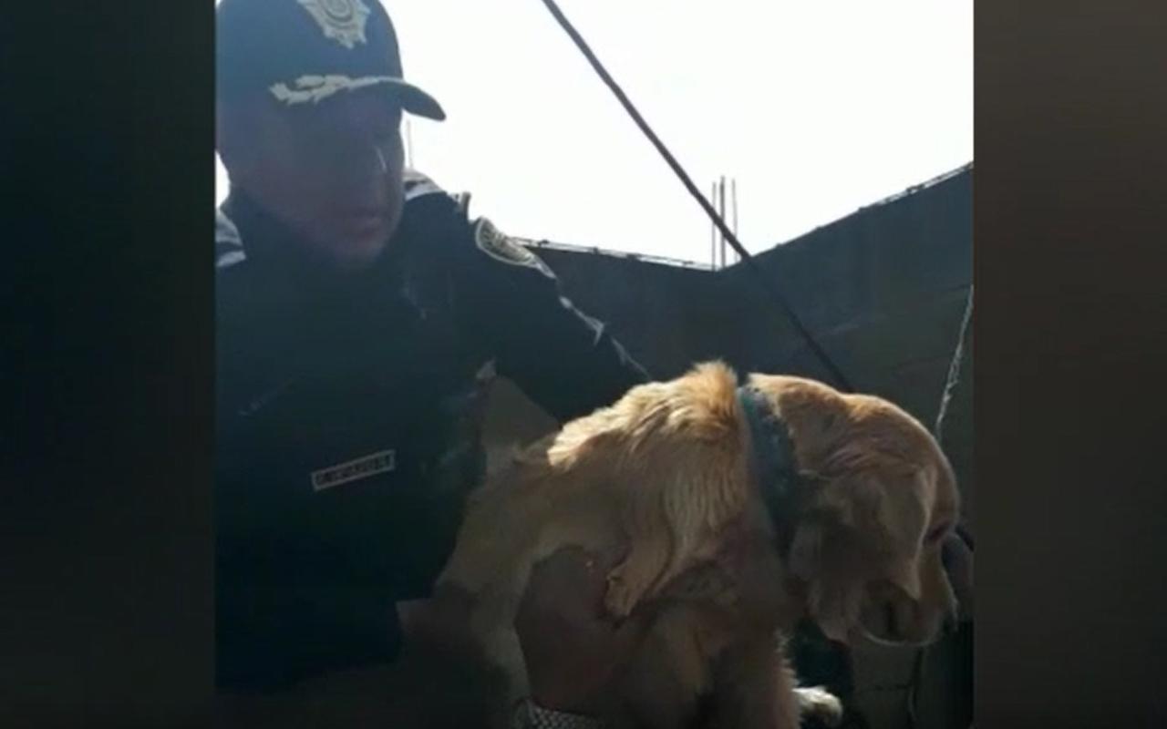 Rescatan a mascotas en inundación de Tula