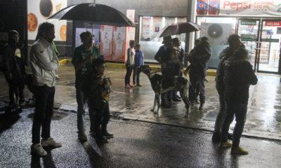 Saldo blanco preliminar en CDMX Edomex tras sismo: piden tranquilidad a la gente