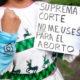 Pasos por la vida cuestiona argumentos de SCJN para despenalizar el aborto
